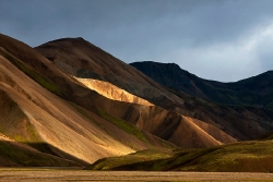 NFS Naturfotograf des Jahres 2011
